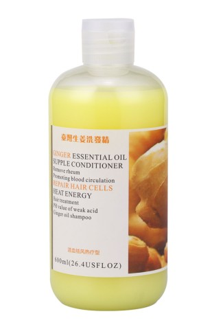 600ml-DSY-Natural-font-b-Anti-b-font-Hair-Loss-oil-control-soft-mild-Taiwan-Ginger